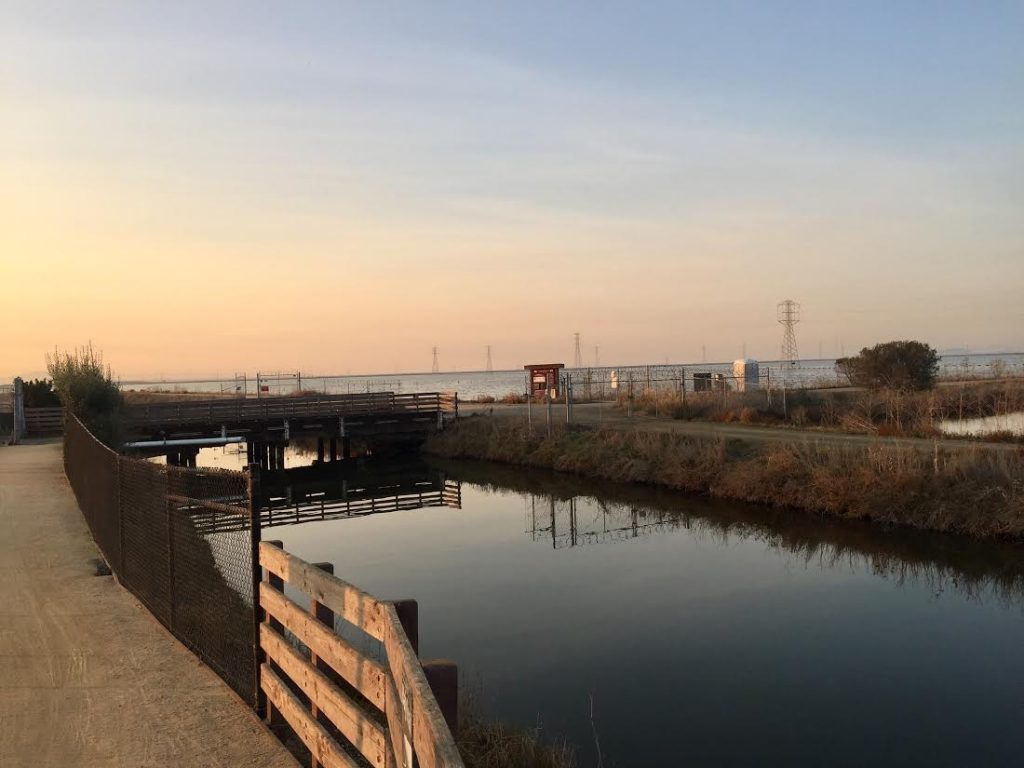 The body of of Chuchu Ma was discovered in this San Francisco Bay drainage ditch. Post photo by Allison Levitsky.