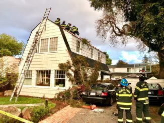 A large branch of a 130-foot redwood tree crashed through the roof of a home on Baywood Avenue in Menlo Park. Photo courtesy of the Menlo Park Fire Protection District.