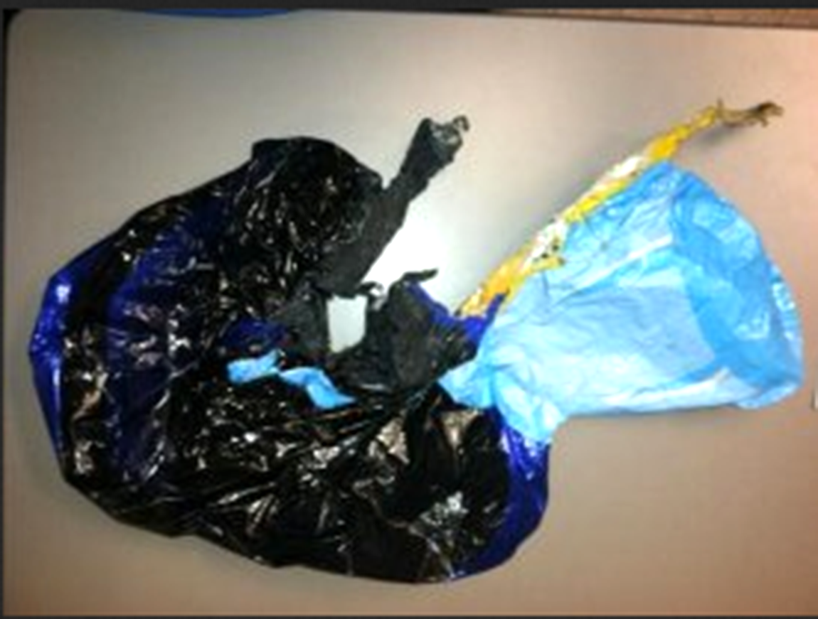 The Palo Alto utilities department posted this photo of the balloon that caused tonight's outage.