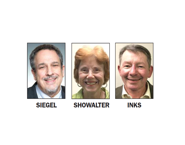 mv council endorsements