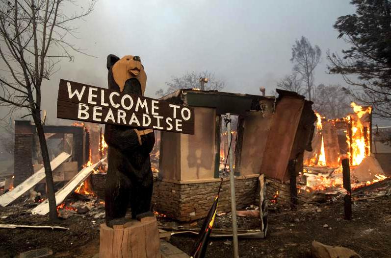 paradise fire black bear diner