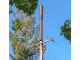 "The city of Palo Alto is looking into regulations of small ""node"" antennas such as this one."